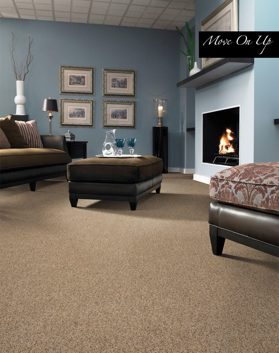 Carpet Warehouse Taunton Carpet Vidalondon